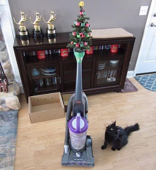 ペットと過ごすクリスマスの画像(3枚目)
