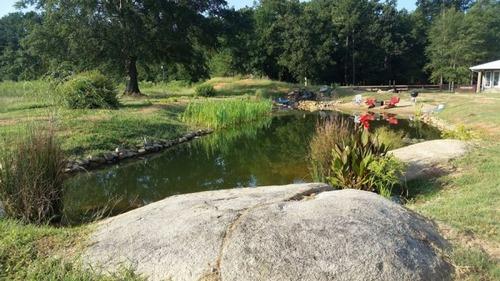 巨大な池の画像(24枚目)