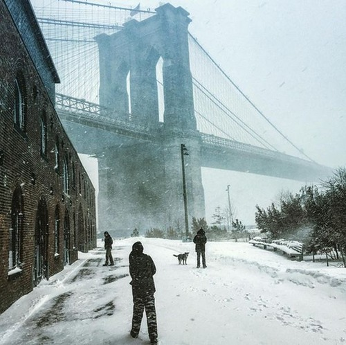 【画像】大雪のニューヨークで日常生活が大変な事になっている様子!の画像(7枚目)