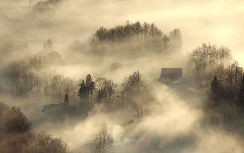 森の中の隠れ家の画像(43枚目)