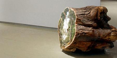 木の年輪に描かれた絵01
