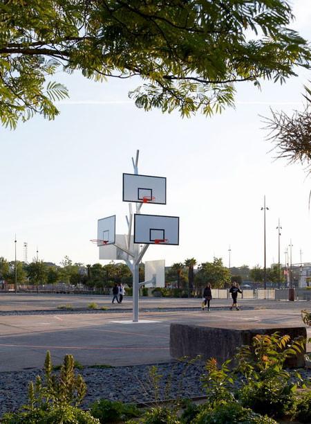 バスケットゴールの木03