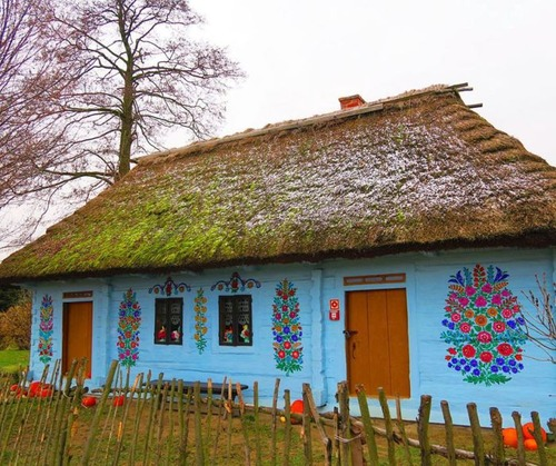 お花がプリントしてある可愛い家の画像(26枚目)