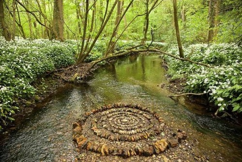 自然の素材を使ったアートの画像(8枚目)