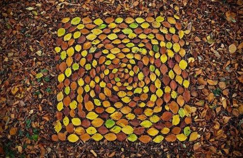 自然の素材を使ったアートの画像(35枚目)
