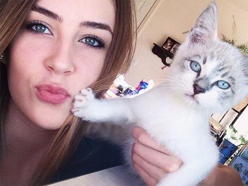 癒そうな猫の画像(14枚目)