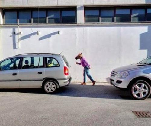 面白Googleストリートビューの画像(3枚目)