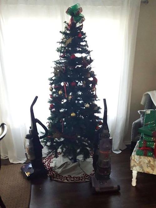 ペットと過ごすクリスマスの画像(21枚目)