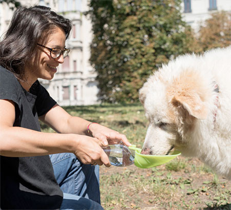 犬の水筒02