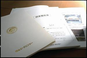 houkokusyo