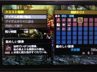 IMG_0981_R