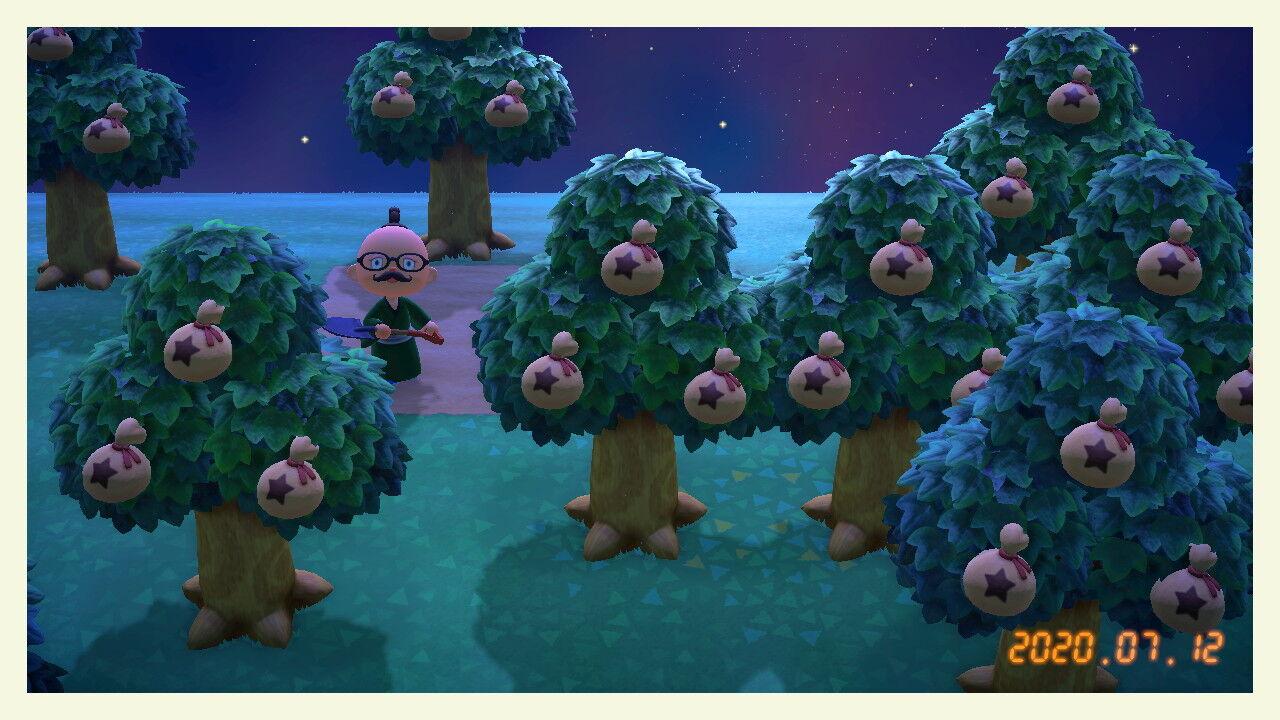 金 あつまれ 森 どうぶつ なる の 木 の