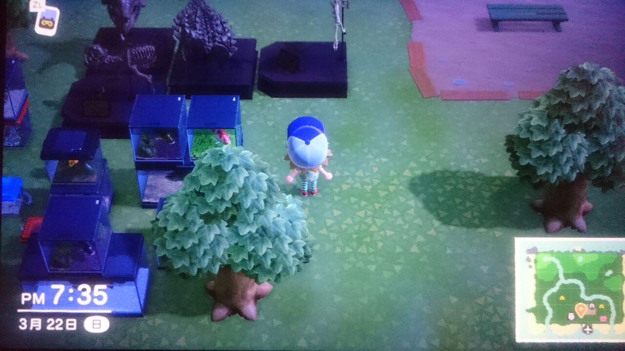 て っ 集め 方 あつ こう 森 せき