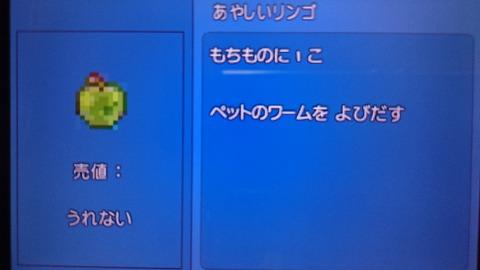DSC_0019