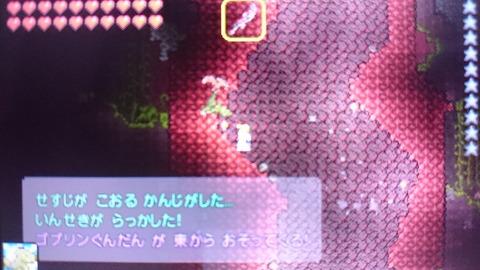 DSC_0015