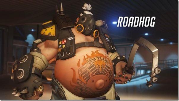 Roadhog Overview