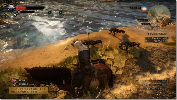 The Witcher 3 06.04.2015 - 06.15.01.55.mp4_snapshot_00.01_[2015.06.11_22.43.29]