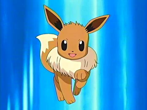 May_Eevee pokemon anime