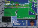 トッププロゴルフ2 ソフトビジョン メガドライブ MD版