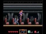 ゴーストスイーパー美神 除霊師はナイスバディ バナレックス・バンダイ スーパーファミコン SFC版 GS美神