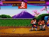 大仁田厚FMW ポニーキャニオン スーパーファミコン SFC版