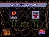 NBA プロバスケットボール94 EAビクター メガドライブ MD版