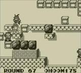 ピットマン アスク講談社 ゲームボーイ GB版