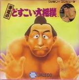 寺尾のどすこい大相撲 ジャレコ ファミコン FC版