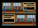 ザ・キックボクシング マイクロワールド メガドライブ MD版