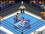 スーパーファイヤープロレスリングX ヒューマン スーパーファミコン SFC版