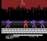 飛龍の拳� 五人の龍戦士 カルチャーブレーン ファミコン FC版
