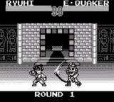 SD飛龍の拳外伝 カルチャーブレーン ゲームボーイ GB版