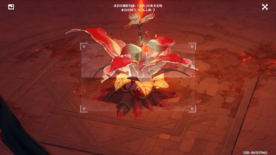 原 神 赤い 生物 【原神】赤色の生物どこにいるの?? 原神まとめ速報