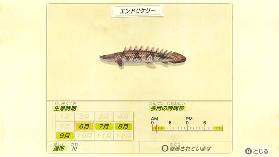 時間 帯 森 ジンベイザメ あつ 【あつ森】ジャスティンからもらえる模型の大きさ|実物とのサイズ比較