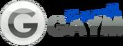 logo_gaym_top