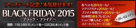 ds_blackF2015_02