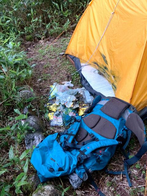 【注意】人間はクマの餌 長野でキャンプをしていた静岡県民、クマに襲われ頭をガブリ テント4つに被害も