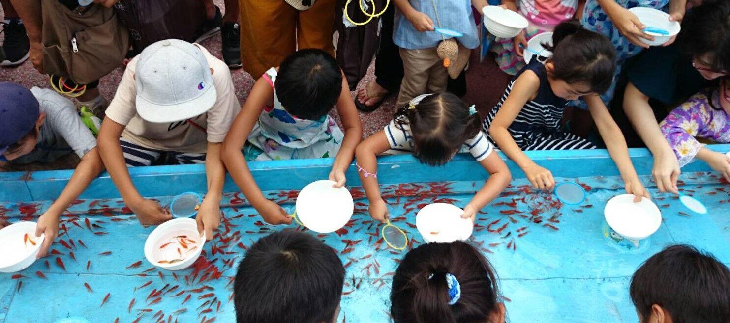 【悲報】夏祭り中止で金魚が売れない! このままだと破棄か? 金魚迷惑にはならないように・・