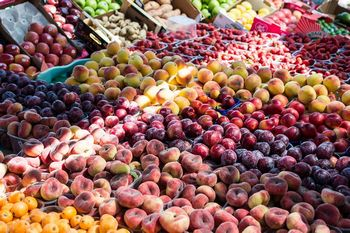食料管理システム説