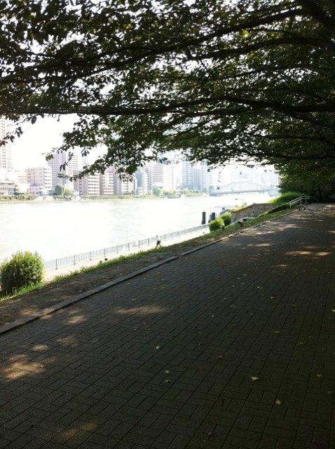 IMG_3906 (2)