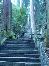 室生寺階段