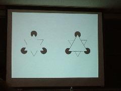 COEテーマ講義(4)カニッツァの三角形
