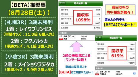 【前日大口】神戸新聞杯&オールカマーであの人気薄馬に大口投票があった!<2021>