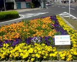 Blog_090418_b.JPG