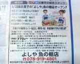 Blog_070311_3.JPG