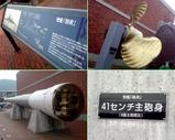 Blog_081011_b.JPG