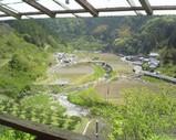 Blog_070503_1.JPG