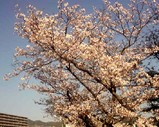 Blog_090401_a.JPG