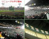 Blog_090503_m.JPG
