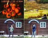 Blog_071125_4.JPG